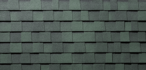 Everest shingles