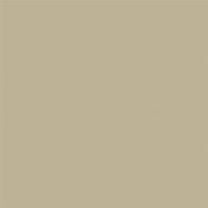 New Holland Beige paint